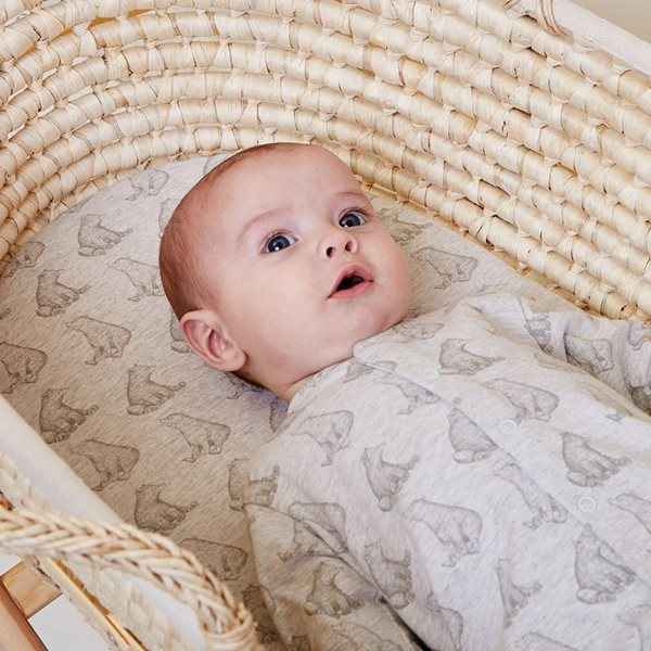 Wild Cotton Organic Bedding Set Moses Basket/Pram - Bear